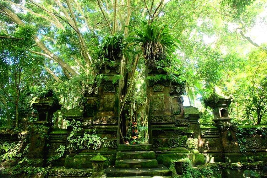 Le bien-être à Bali, avec Shambali