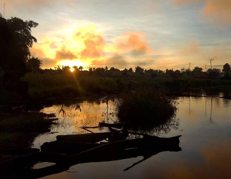 À la recherche des crocodiles perdus