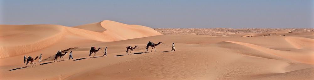 Votre agence de voyage en Mauritanie