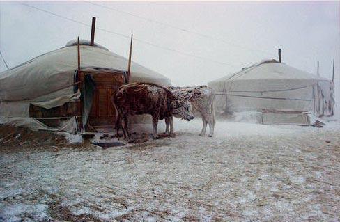 De fortes tempêtes de neige et le dégel provoquent le chaos