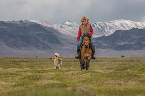 chien mongole