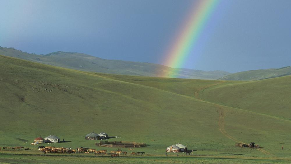 Best season to come to Mongolia
