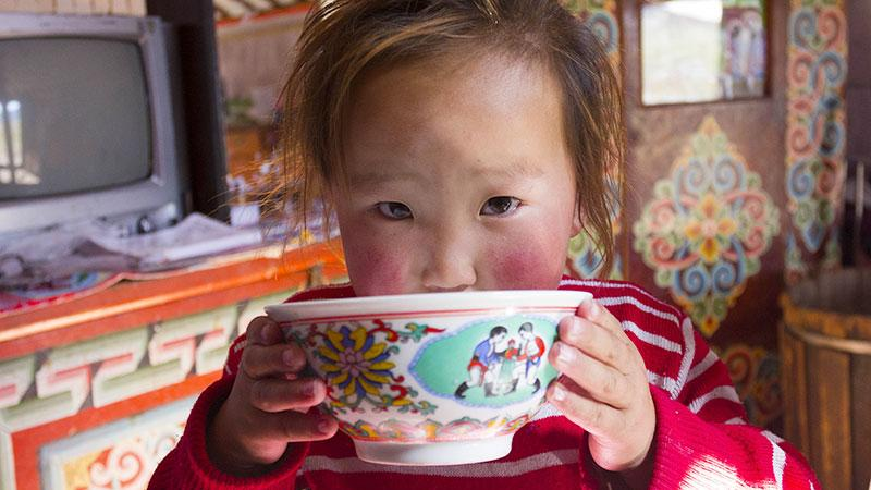 5 most consumed traditional drinks of Mongolia