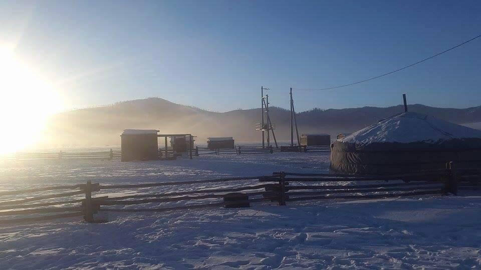 The nine 9s of Mongolian winter